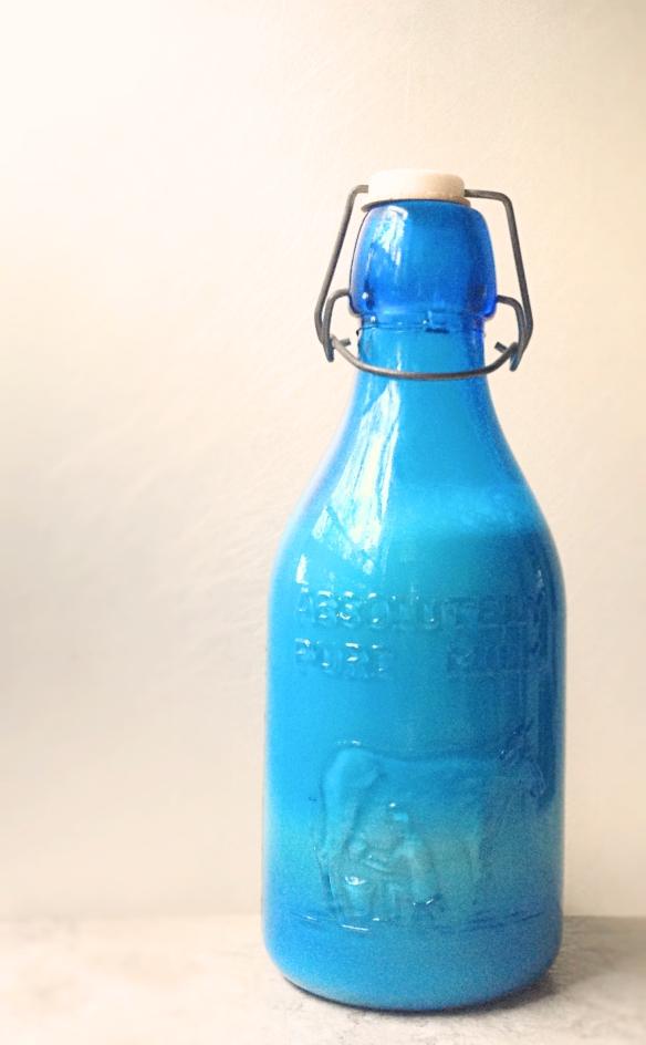bluebottle2